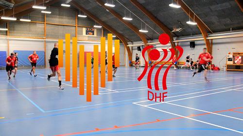 DHF anerkender frivillige i håndbold-Danmark